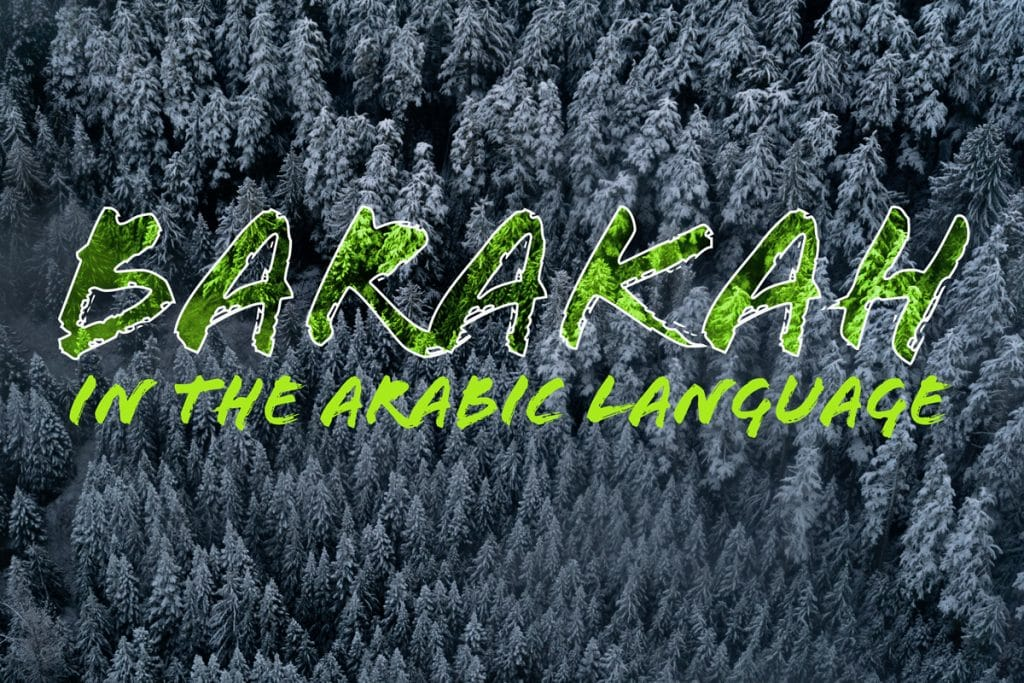 Meaning of barakah in Arabic