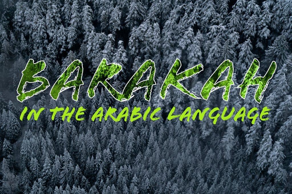 Meaning of barakah in Arabic